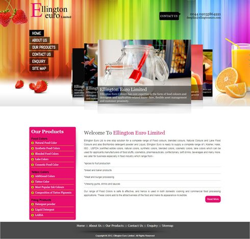 Ellington Euro Limited United Kingdom Web Design