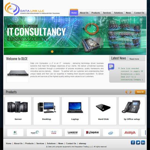 Data Link Computers L.L.C United Arab Emirates Web Design