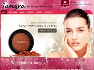 Jangra Global Services - Web Design Portfolio