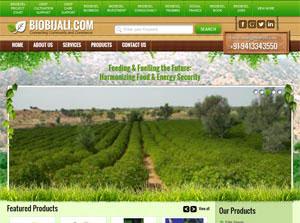 Jatropha - Web Design Portfolio