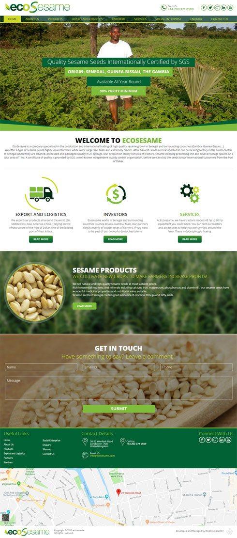 Ecosesame - Web Design Portfolio