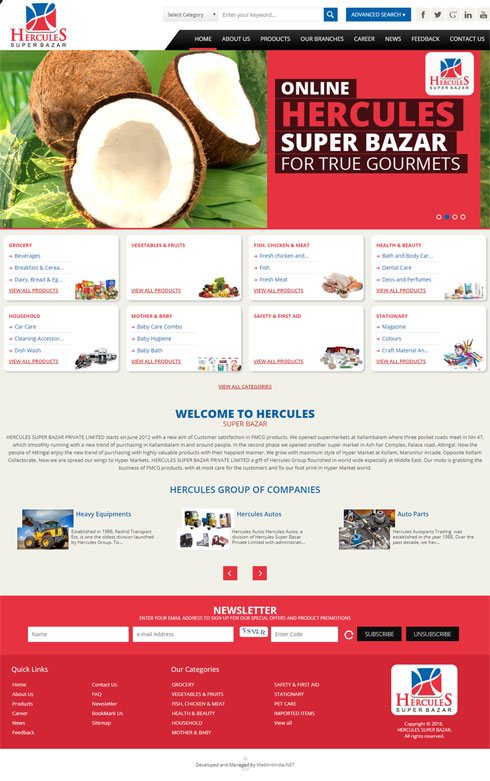 Hercules International India Web Design