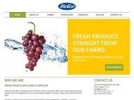BELCO - Web Design Portfolio