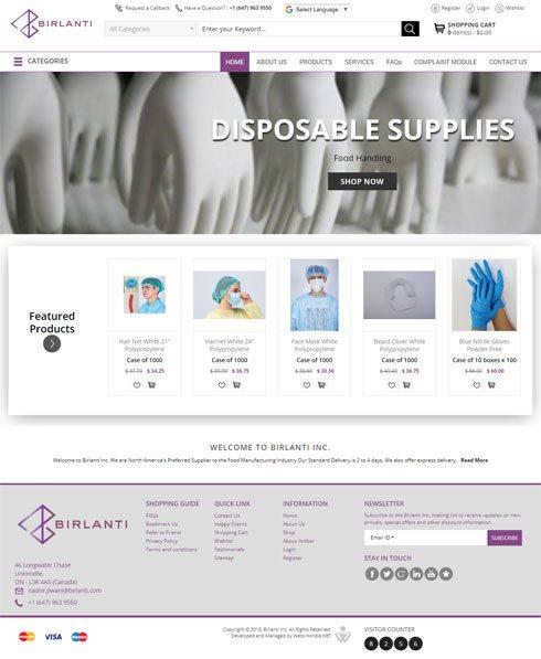 Birlanti Inc Canada Web Design
