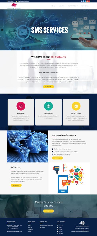 TNS Consultants United Arab Emirates Web Design